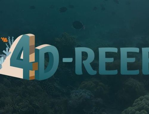 2nd Network Training Activity for the 4D-REEF Consortium