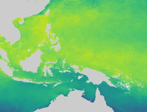 Looking at coral reefs' environmental parameters from space